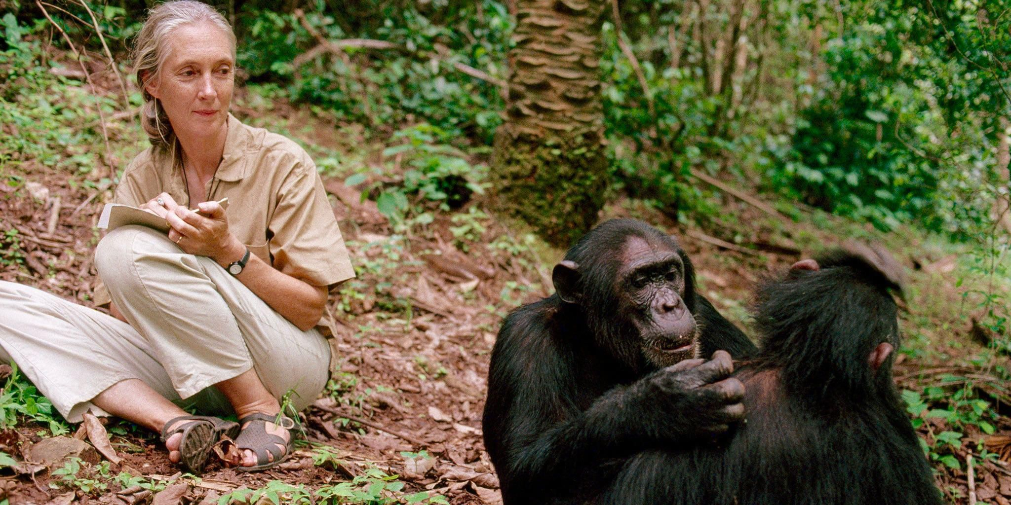Earth Day 2020: 'We desperately need hope now,' Jane Goodall says