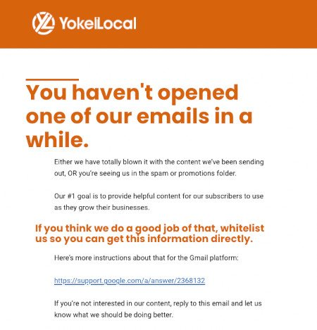 Example of a whitelist email from yokel local